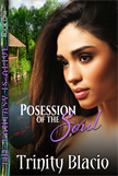 Possession of the Soul - Book One of the Fantasy is Alive Series